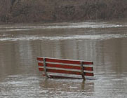 flooding-stock-dh-bench