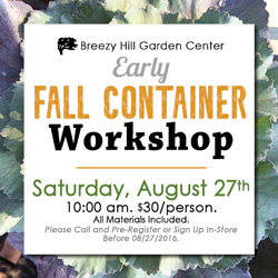 FallContainerWorkshop2016_Thumbnail