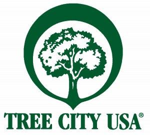 tree-city-logo