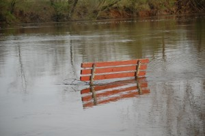 Bench Watch: Still three rungs on the back only showing at Fox River Park Thursday.