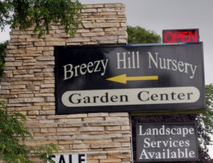The highways adjoining Breezy Hill Nursery may be closed at times for upcoming construction, but the business will be keeping its open sign lit.