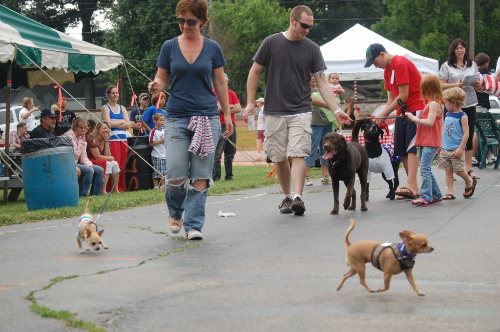 Some of the participants in the pet parade take a lap for the judges. The parade was a new activity sponsored by Scully's Silver Lake Grill.