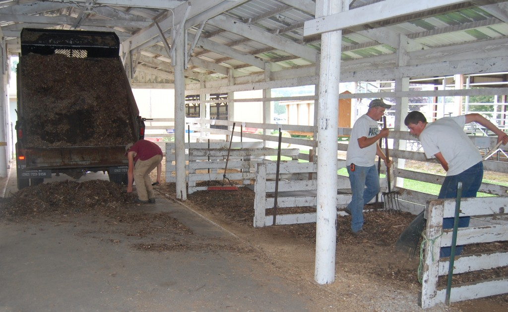 Woodchips were being put down in this cattle barn.