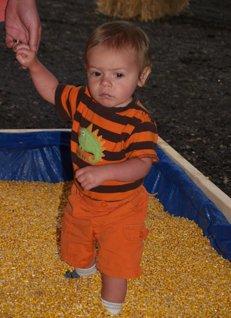Ashton Moyer, 1, of Round Lake Beach, IL digs his heels into the field corn