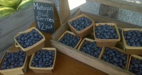 meyer-michigan-blueberries