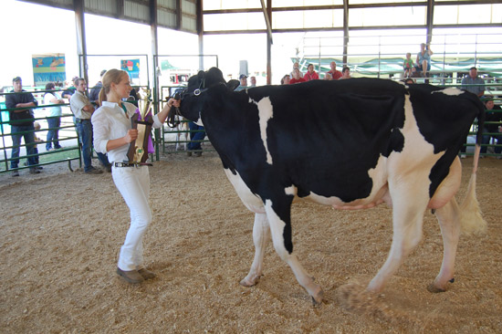 Carrie Weis and her supreme champion overall dairy cow.