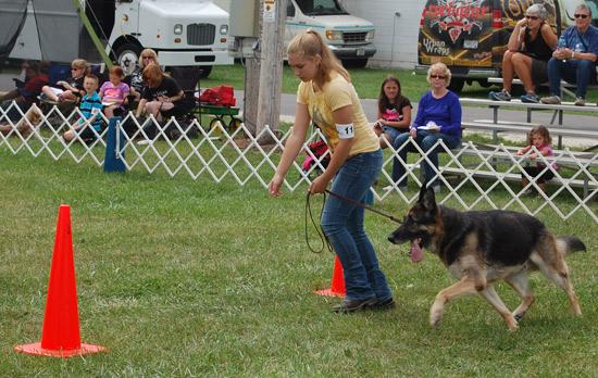 2014-fair-dog-show-3