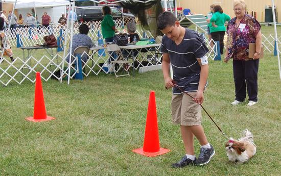 2014-fair-dog-show-5