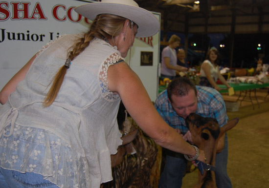 2014-fair-pie-auction-2