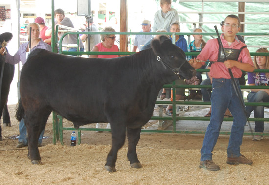 Joey McManus and his reserve champion steer.