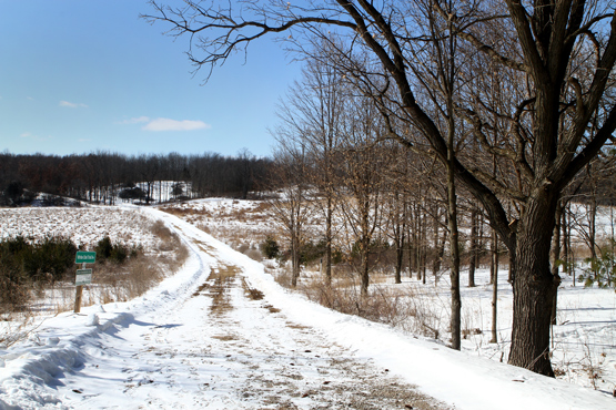 one of the trails