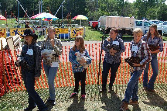 2016 fair poultry 2-opt