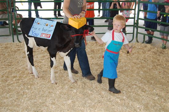 dairy futurity 5-opt