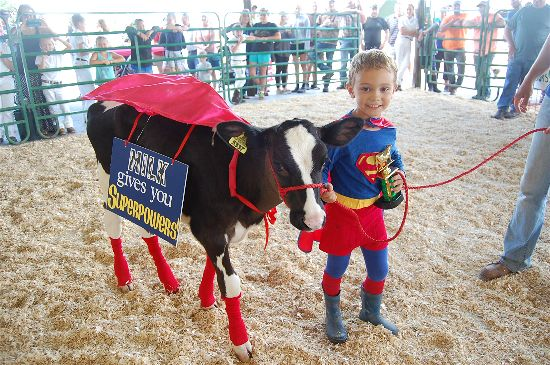 Eli Daniels won the 2016 Dairy Futurity contest.